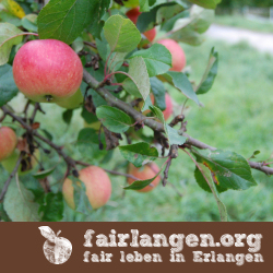www.fairlangen.org